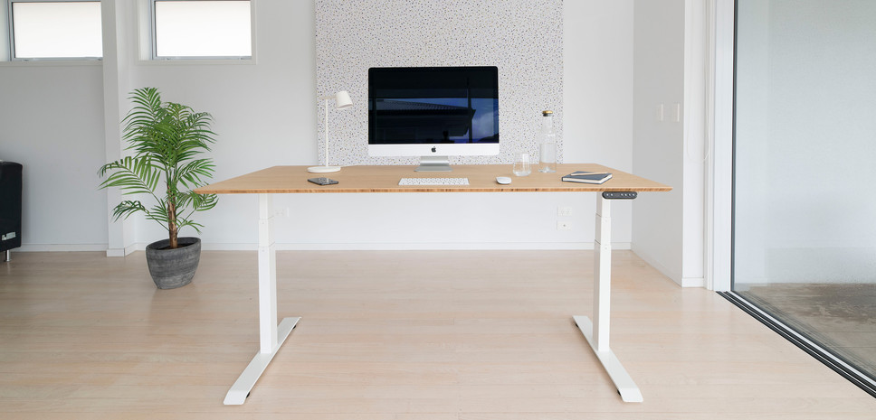 Stand Desk Review