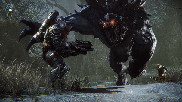 Evolve slips into 2015