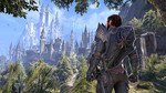 The Elder Scrolls Online goes to the home of the High Elves