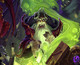 Hearthstone: The Curse of Naxxramas drops next week