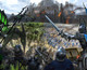 Ubisoft launches browser based Might & Magic MMO