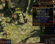 Path of Exile expands closed beta