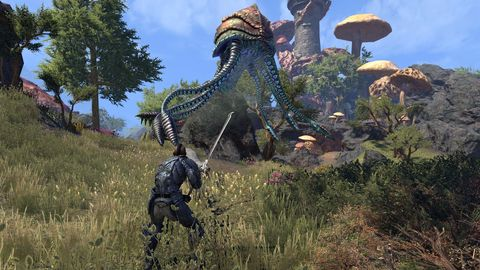 The Elder Scrolls Online: Morrowind preview